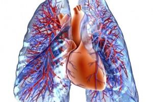 秋季养肺正当时坚持做5件事滋阴润燥给肺洗个澡